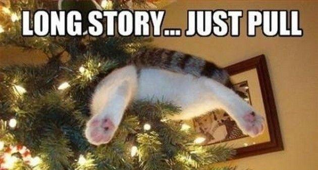 15 hilarious christmas memes thetalko